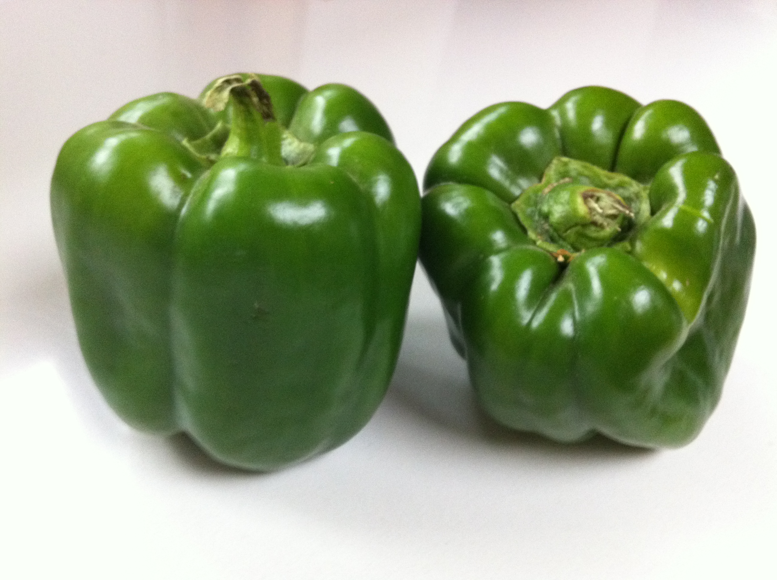 green pepper The green pepper has everything you need to make outdoor clothing and gear  using green pepper patterns.