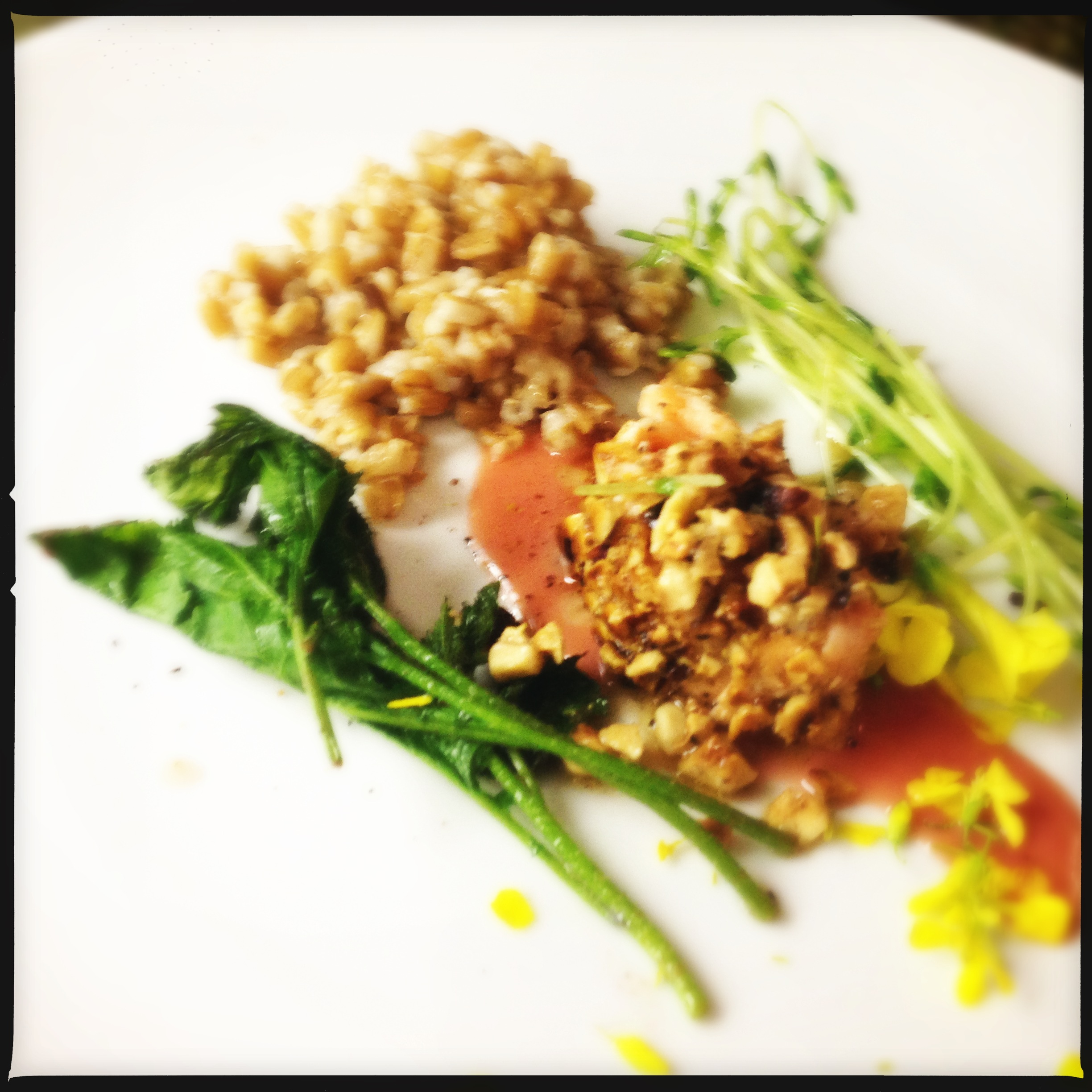 Hazelnut-crusted salmon with sauteed pea greens, rhubarb reduction ...