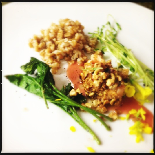 Hazelnut-crusted salmon with sauteed pea greens, rhubarb reduction, farro and mustard flowers