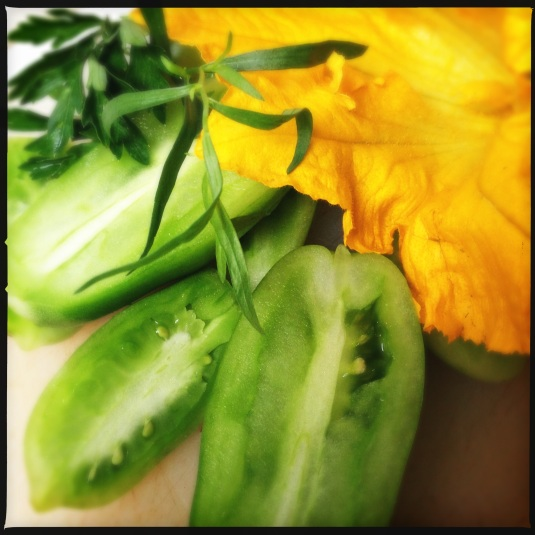 Green tomatoes, herbs & squash blossom