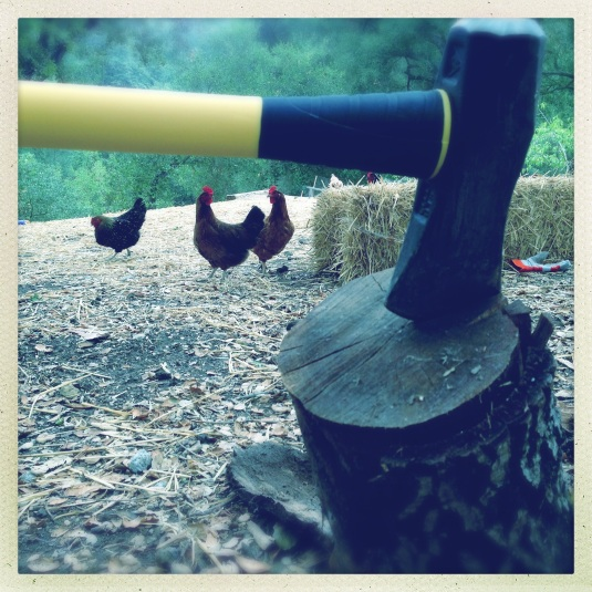 Splitting axe with curious chickens
