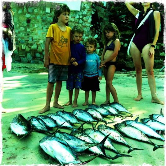 The fish on Playa las Animas