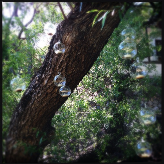 Glass candle baubles dangle from the oaks at 1909