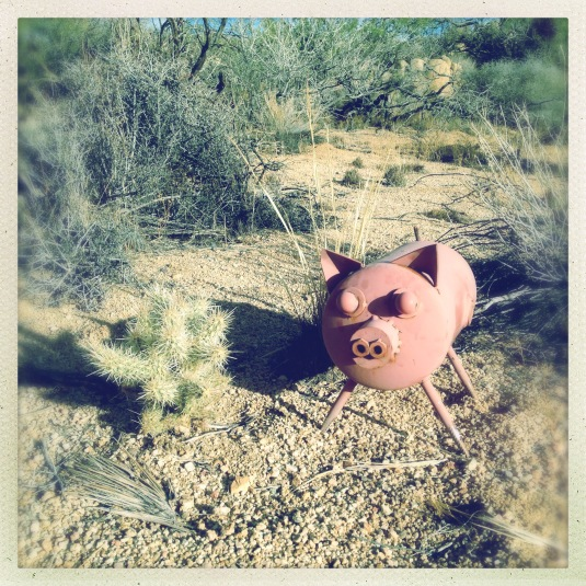 Camp Nylen cookout mascot with cholla cactus