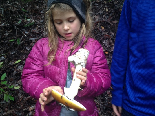 Willa with amanita coccora — the only edible mushroom in a family of deadly beauties