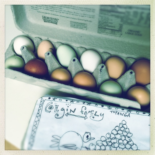 The eggs matter.
